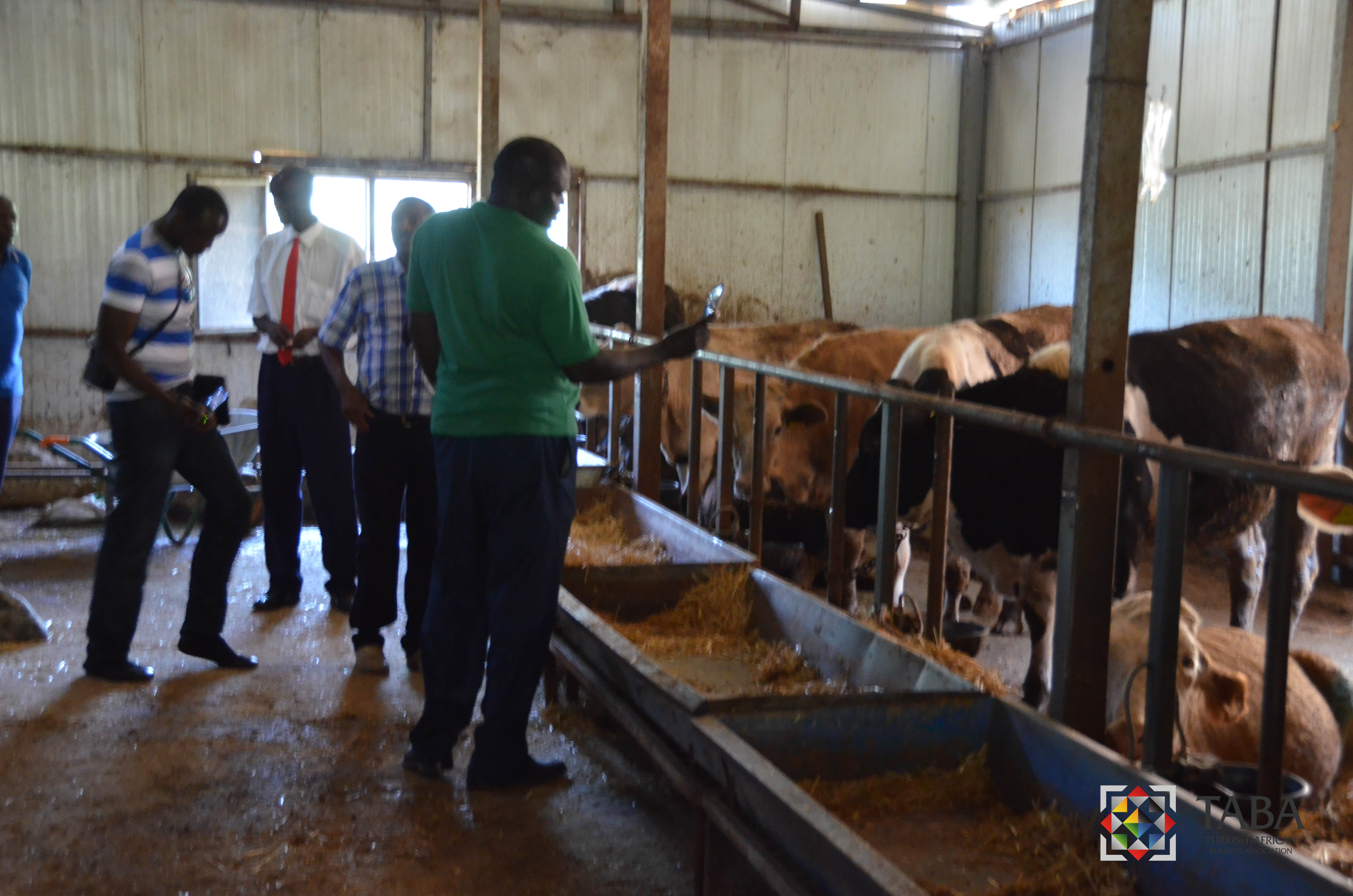 Kenya Tarım Delegasyonu