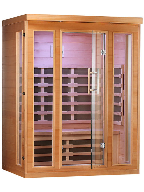 Sauna_3 person door closed.JPG