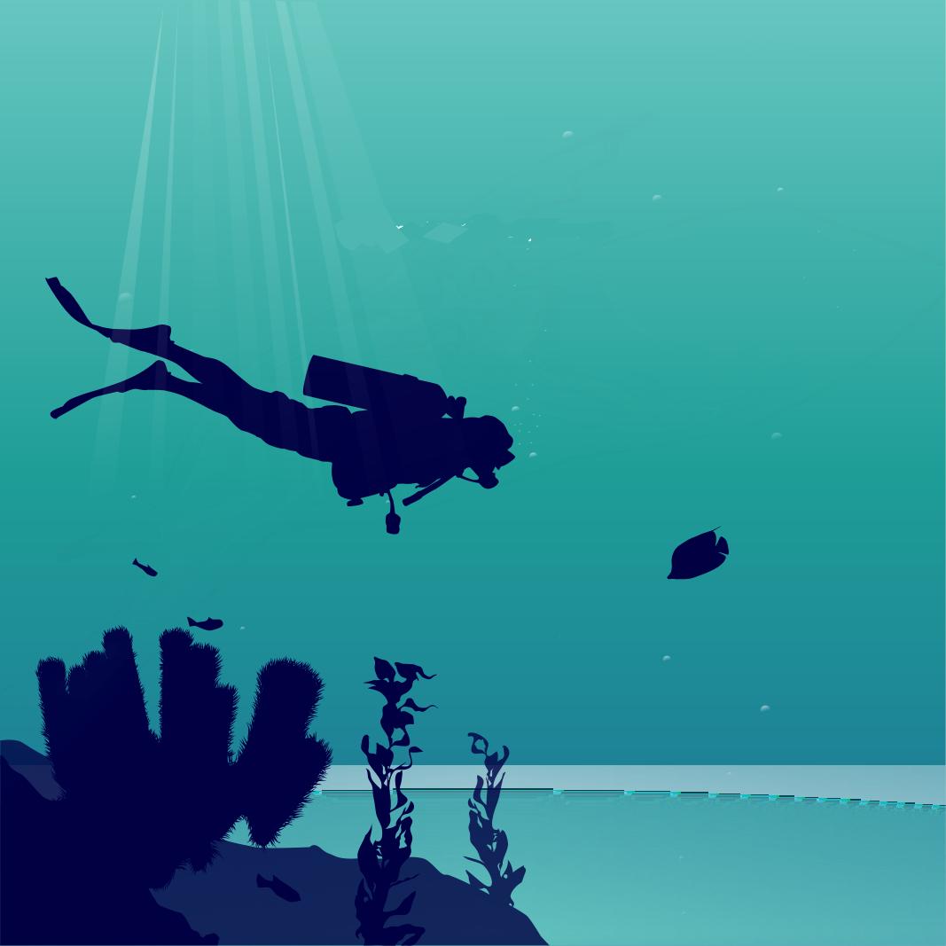 Deep Dive SAR Discovery Call