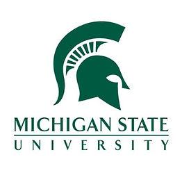 michigan-state-university.jpg