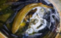 IMG-20180808-WA0025_edited.jpg