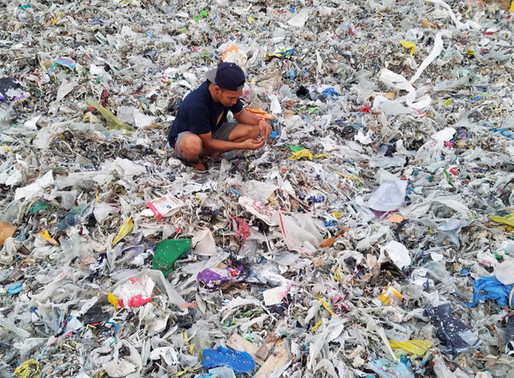 Seaside Sustainability Hosts Virtual Panel of The Story of Plastic