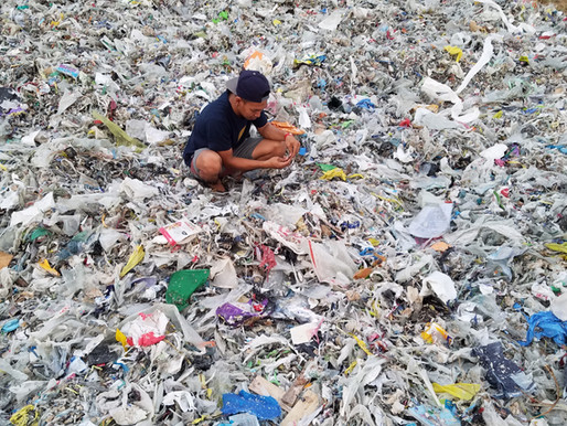 Seaside Sustainability Hosts Virtual Panel on The Story of Plastic