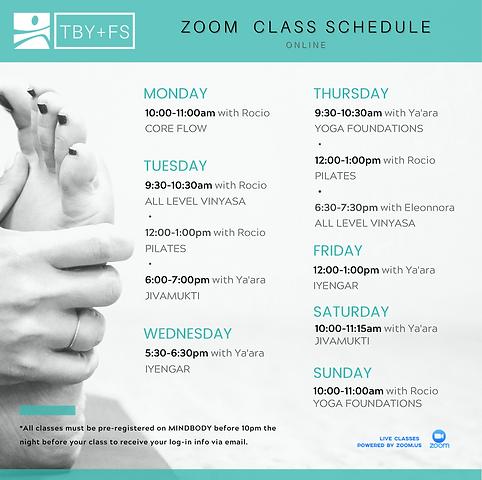 ZOOM Class Schedule (1).png