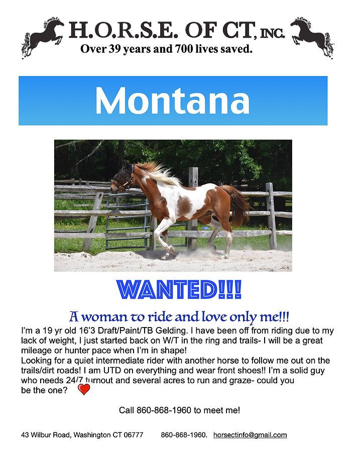 Montana Revised-1.jpg