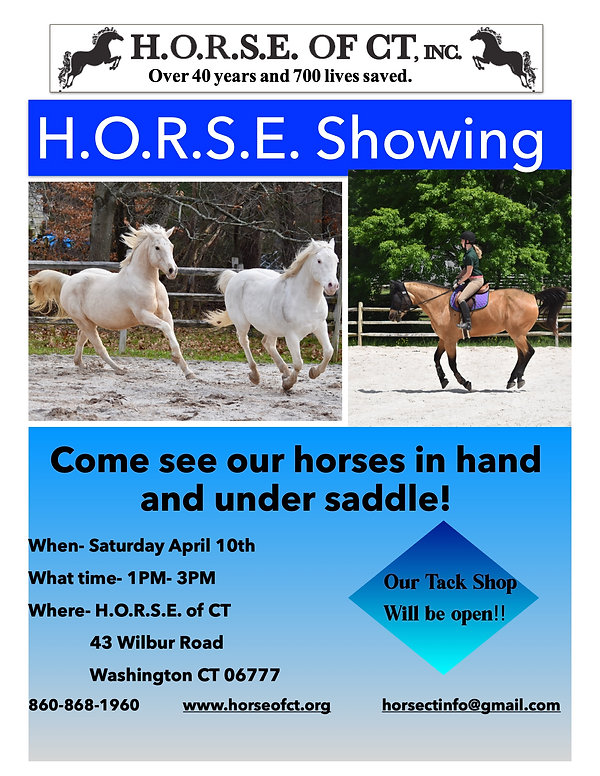 horse showing April.jpg