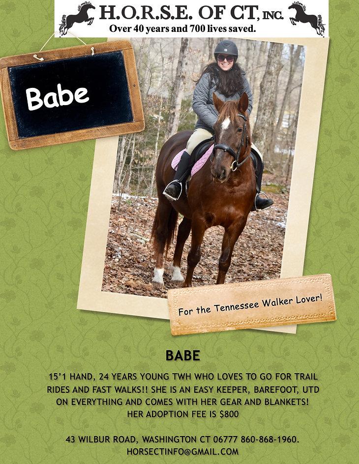 BABE-3.jpg