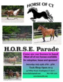 Horse Parade.jpg