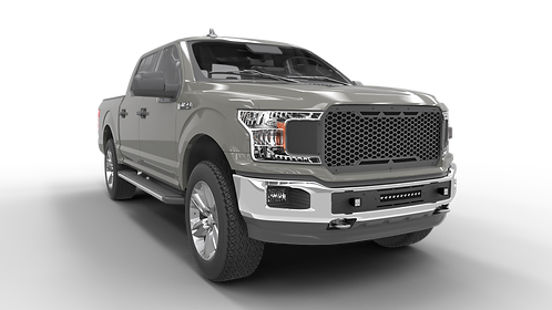 Cage Figther: 2018-2020 Ford F150 Upper Grille