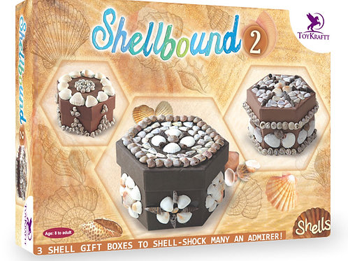 Shellbound-2 Gift boxes and carft work with shells for kids ages 5 and above