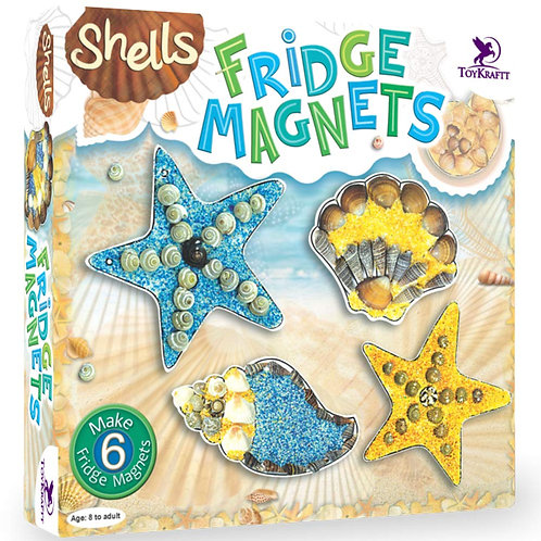 Shell Fridge Magnets