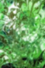 fotografos madrid precios, fotografo madrid precios, fotografo precios, estudio propio, fotógrafo madrid estudio, estudio de fotografía madrid, estudio fotografico en madrid, fotografo low cost madrid, fotografos madrid book, fotografo madrid book, fotografos profesionales madrid, clases de fotografia, clases de fotografia madrid, clases de fotografia basica, clases de fotografia basica madrid, cursos de fotografia madrid, cursos de fotografia, escuela de fotografia, escuela de fotografia madrid, curso fotografia fin de semana madrid, curso de fotografia fin de semana, curso iniciacion fotografia, curso iniciacion fotografia madrid, curso de fotografia madrid baratos, clases particulares fotografia, clases particulares fotografia madrid, curso de Photoshop, curso de Photoshop online, curso de Photoshop presencial, curso Photoshop madrid, curso Photoshop fin de semana madrid, curso de retoque fotografico profesional, retoque fotografico Photoshop, curso postproduccion fotográfica,