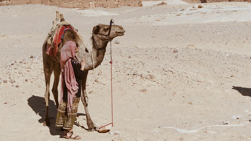 mercurean-portrait-desert.jpg