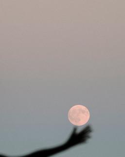 Mallorca-full moon.jpg