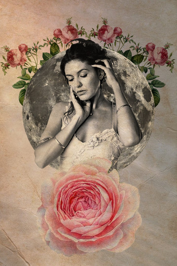 Rosa Damascena.jpg