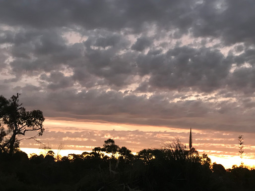 Video - Sunset Over Melbourne