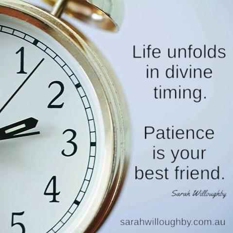Life unfolds in divine.jpg
