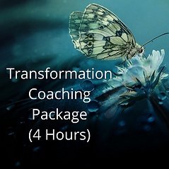 Transformation Coaching Package 4 Hours Sixth .png