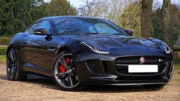 jaguar-1256572_1920.jpg