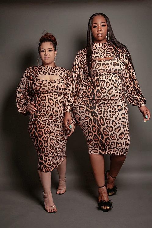 Kurvy Wild Dress Set