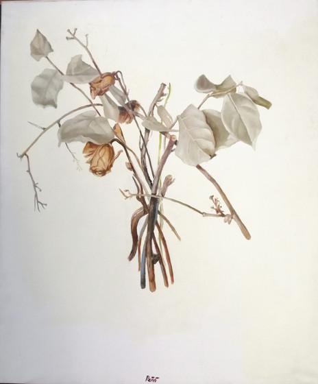 composizione con foglie secce