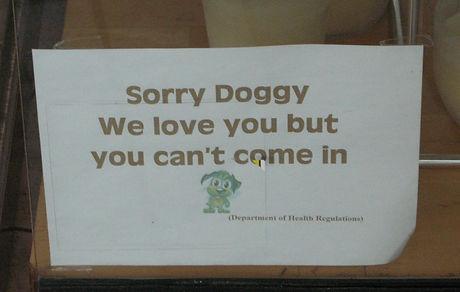 Sorry Doggy
