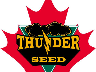 Thunder Seed sponsoring the 2nd Annual Social Spiel
