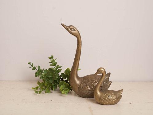 Pr. Brass Swans