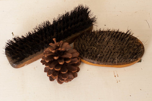 Old Shoe Brush Pair