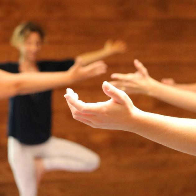 """Atelier Hatha Yoga """"Ancrage et stabilité"""""""