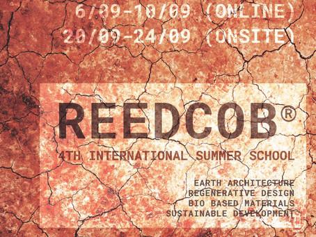 REEDCOB®️ Online/Onsite International Summer School