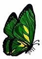 butterflylogo_clean.jpg (1).png