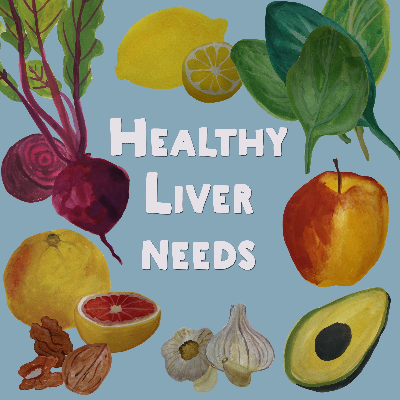 Healthy Liver