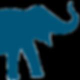 Pachyderm_logo_RGB_edited.png
