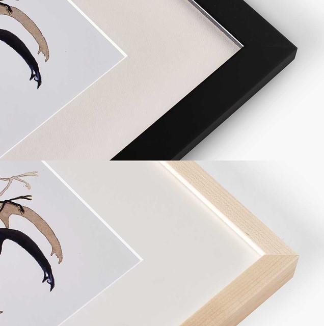 archival mount, top: flat frame, bottom: box frame