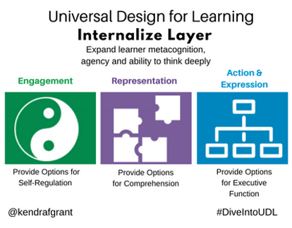 Universal Design for Learing: Internalize Layer. Long description available by following the link.
