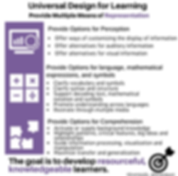 Universal Design for Learning: Provide multiple means of Representaion. Long description available by following the link.