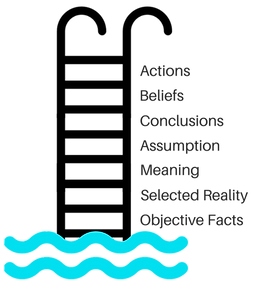 Swimmer climbing out of the pool. Text appears next to ladder, from water's edge to top of ladder: Objective facts, selected reality, meaning, assumption, conclusions, beliefs, action.
