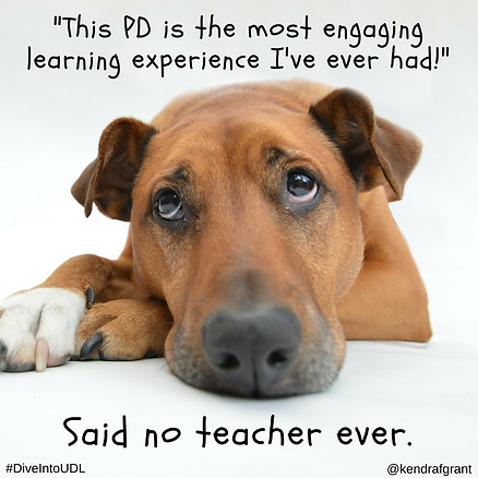 Puppy with sad face. Text reads: This PD is the most engaging learning experience I've ever had!...Said no teacher ever.