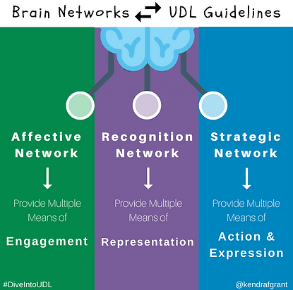 Brain networks and UDL Guidelines Connection. Long description available by following the link.