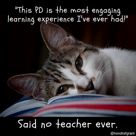 Cat shown with head on an open book. Captiion reads: This PD is the most engaging learning experience I've ever had!..said no teacher ever.