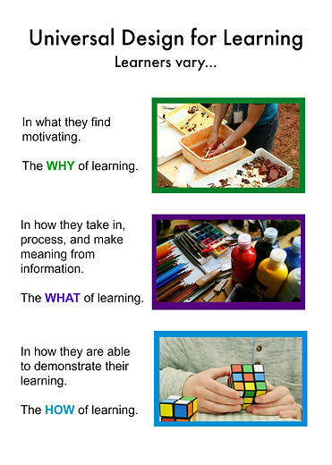 Universal Design for Learning, Learners vary in what they find motivating (the why of learning), in how they take in, process, and make meaning from information (the what of learning), and in how the demonstrate their learning (the how of learning).