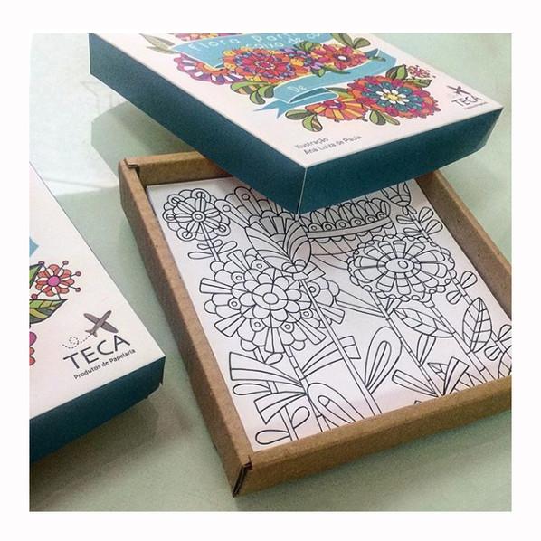 caixa colorir flora