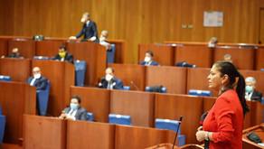 Calabria, in Consiglio regionale va in scena l'indecenza