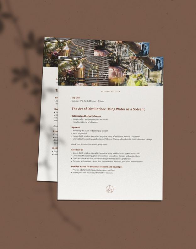 Alembics flyer design