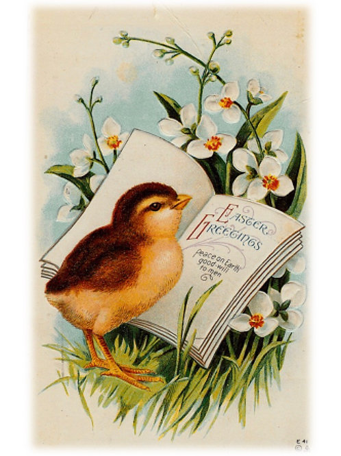 Easter Greeting Card - Easter Greetings Chick