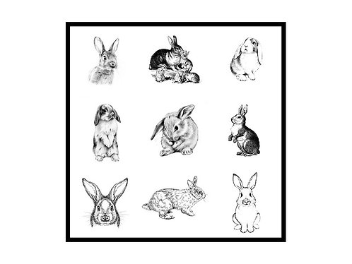 Nine Bunnies - Greeting Note Card - Bunny Rabbit Pattern