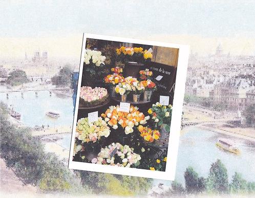 Greeting Note Card - Paris Florist Roses