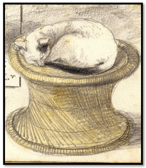 Greeting Card - Cat Sleeping on a Table