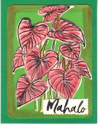Mahalo/Thank You